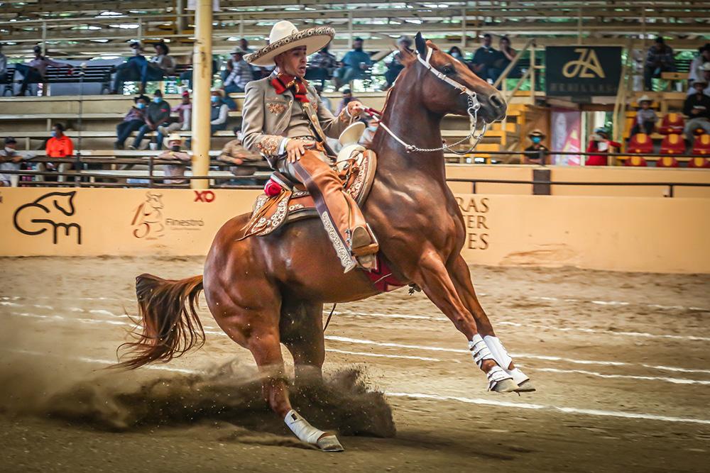 Refugio Raya calando al ejemplar RUFTIFY de Rancho Las Amazonas, con que conquistó el liderato en la eliminatoria del XI Caladero Futurity Millonario 2021 con 55 puntos
