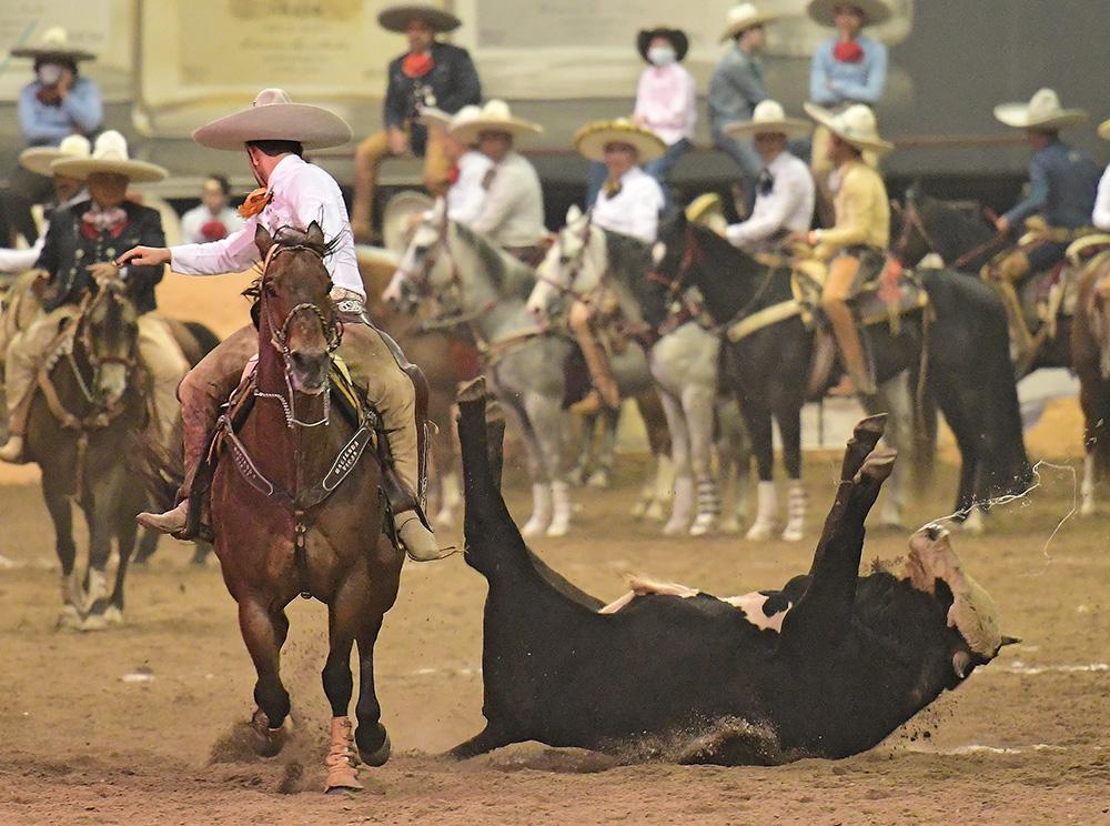 """Buena redonda derecha que consiguió Juan Pablo Bañuelos Corona en su segunda oportunidad de colas, por Tequila Hacienda Vieja """"A"""""""
