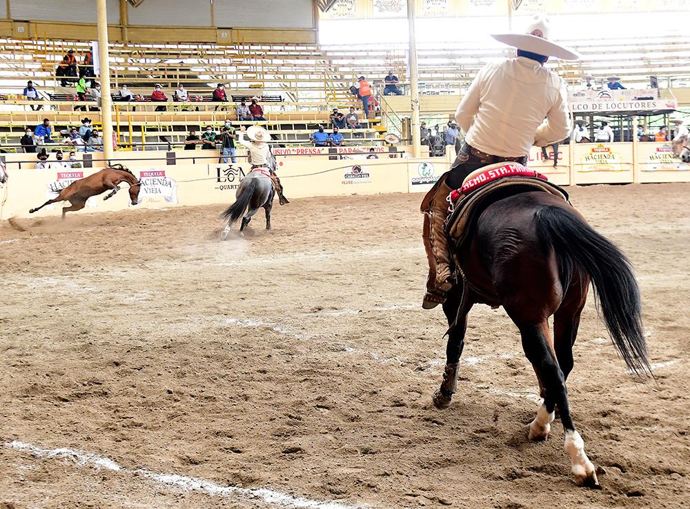 Jorge Pasillas Aldana derribando una de las dos manganas a caballo que agarró para su equipo Rancho Santa María