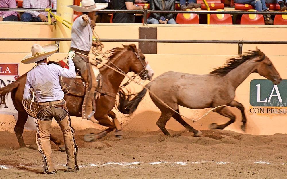 Seis manganas consiguió Juan Francisco Rivera y fue pieza fundamental para la victoria de Hacienda de Triana de Zacatecas